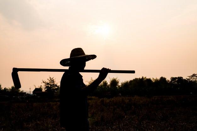 fin jornada laboral agricultor