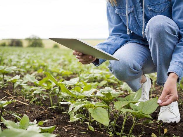 mujer joven agricultora usando aplicación agrícola